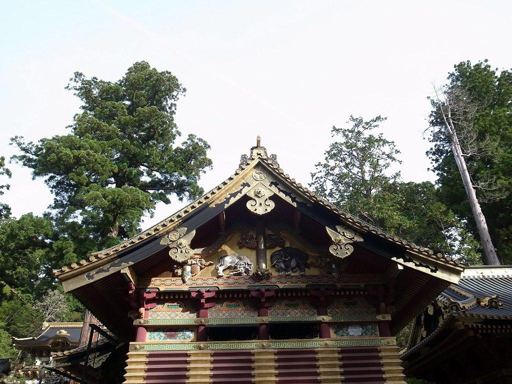 日光東照宮上神庫想像の象