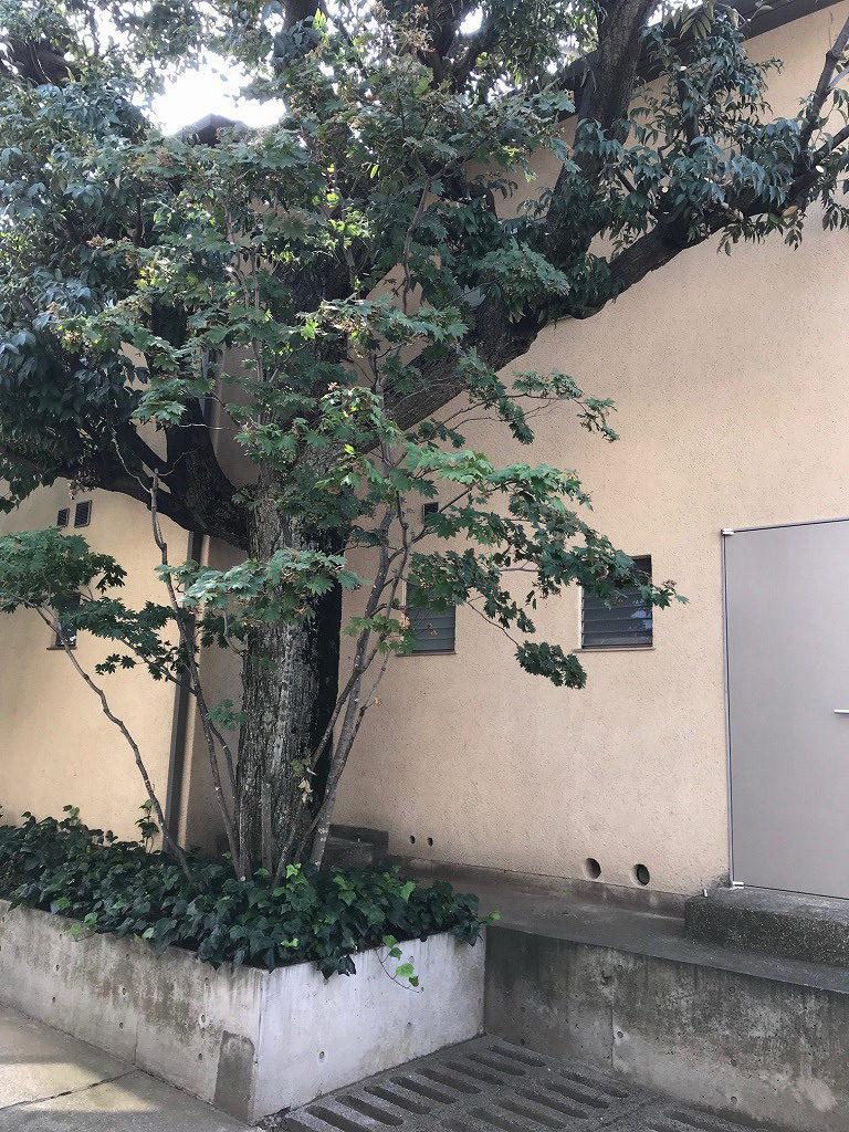 アパートメント鶉