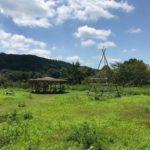 アオゾラ畑の台所